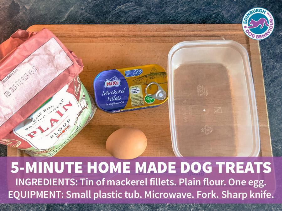 Dog Treats Recipe